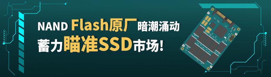 """""""NAND Flash原厂之间暗潮涌动,""""蓄力""""瞄准SSD市场"""